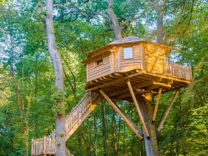 Loger dans une cabane dans les arbres