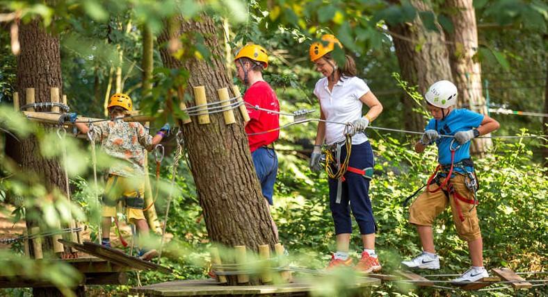 4 activités ludiques à faire dans la forêt